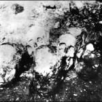 جماجم المبعدين الأرمن
