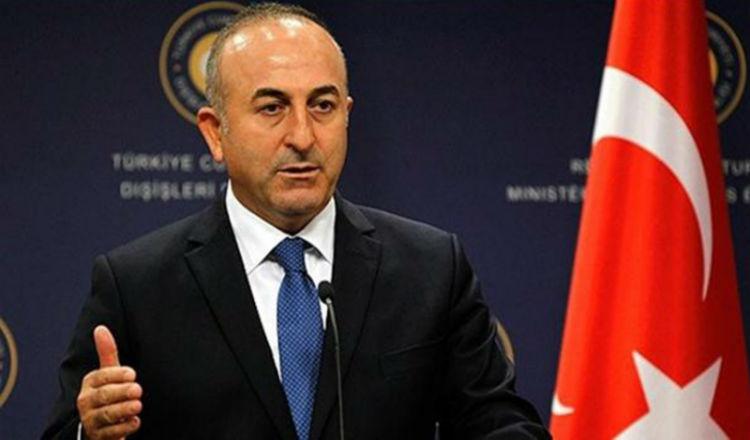وزير خارجية الكيان التركي: اتركوا أحداث 1915 للمؤرخين