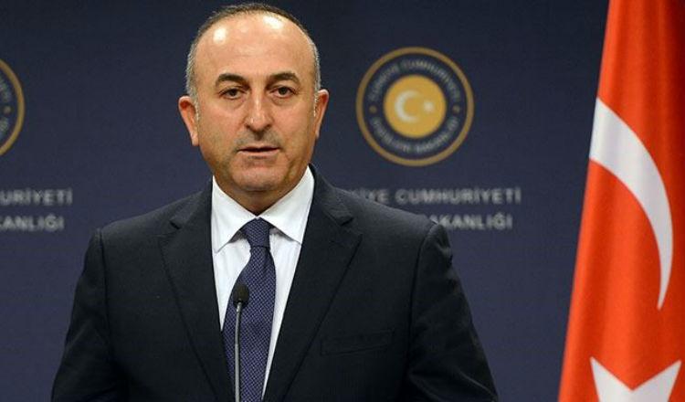 وزير خارجية تركيا: قتلنا أرمن في عفرين لأنهم انضموا لحزب العمال الكردستاني