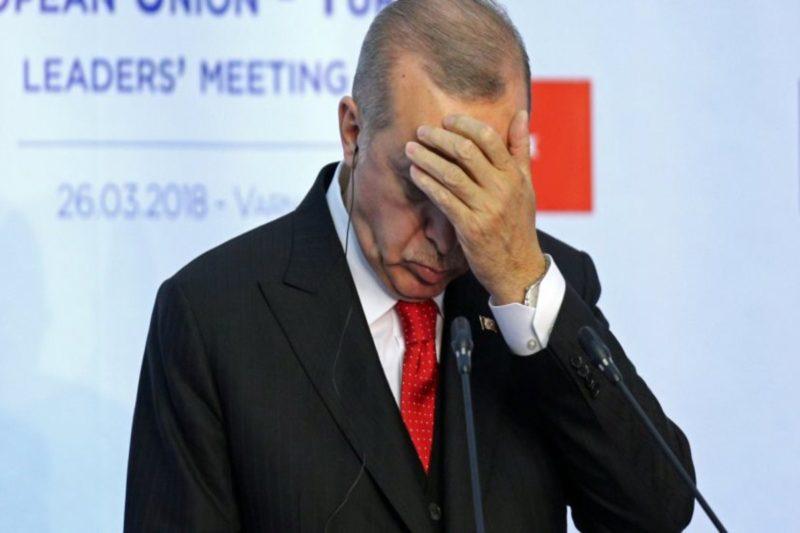 كاتبة تركية تفضح أكاذيب إردوغان